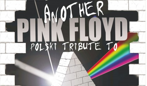 Another Pink Floyd Tribute Band